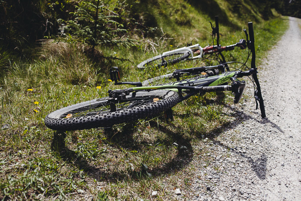002_RC_Grizedale_Forest