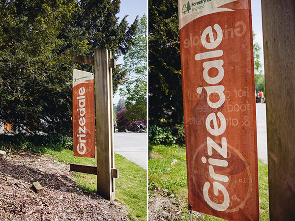 004_RC_Grizedale_Forest