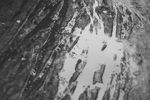 014_RadiatingChaos_Delamere_Forest