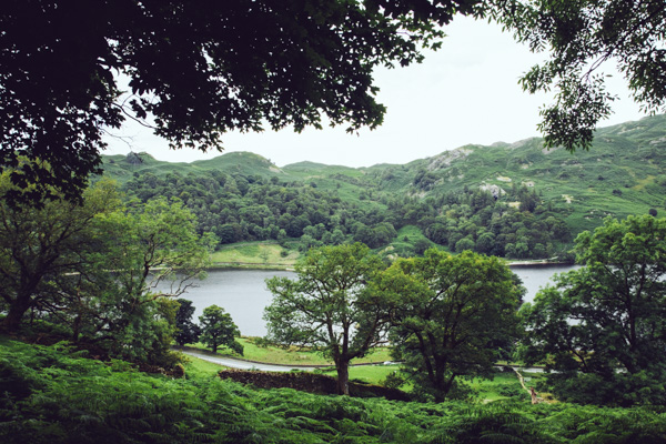 Radiating_Chaos_Rydal_Circuit_007
