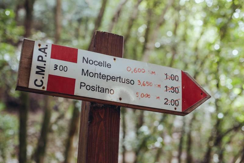 Signpost in the woods. Sentiero degli Dei