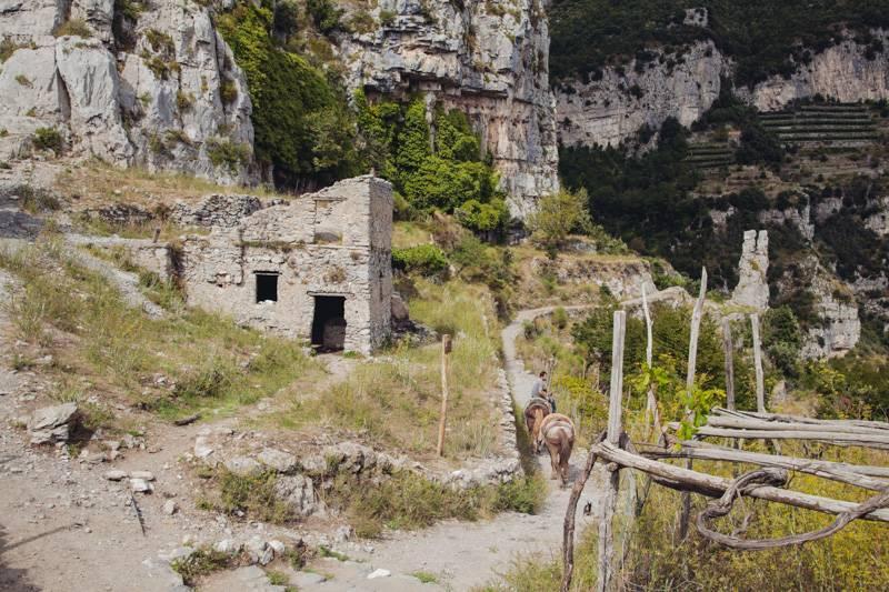 Man leading donkeys down a narrow dirt track, Sentiero degli Dei