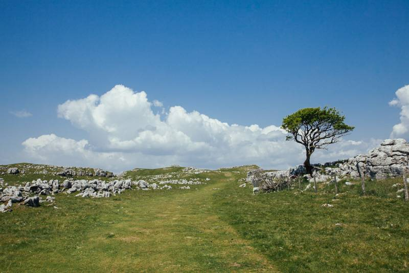 Radiating_Chaos_Malham_Cove_Walk_032