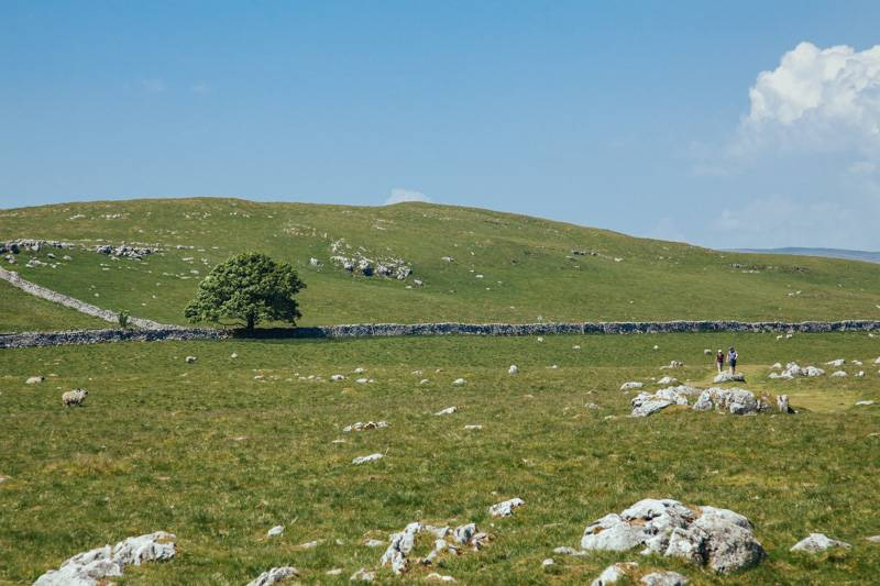 Radiating_Chaos_Malham_Cove_Walk_036