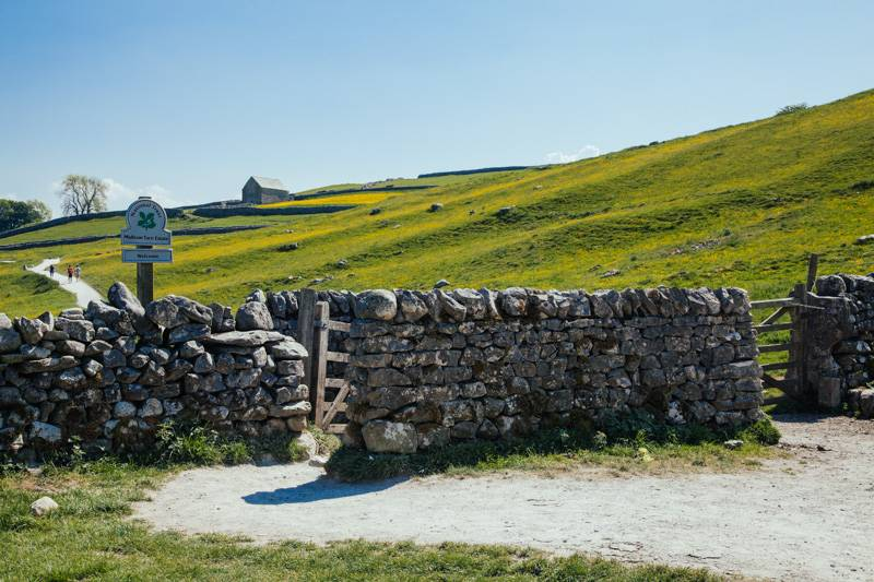 Radiating_Chaos_Malham_Cove_Walk_083