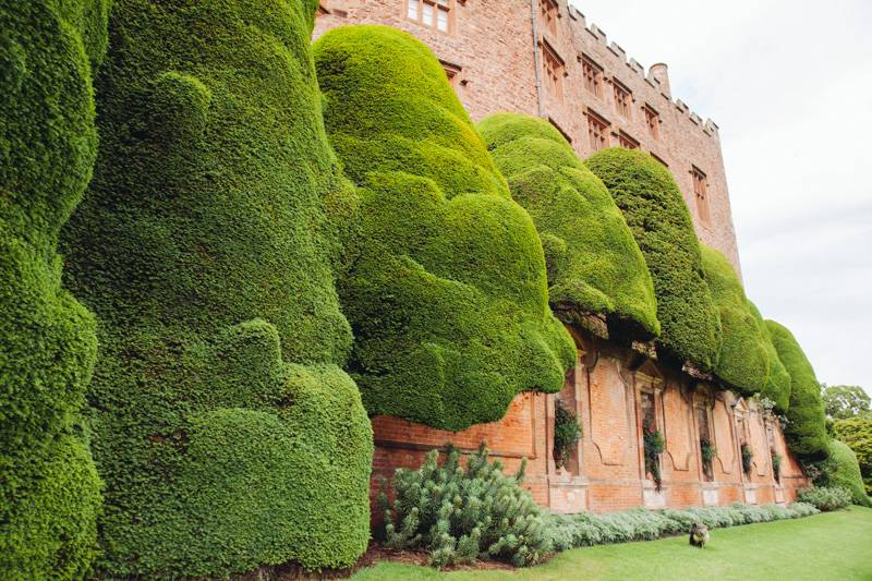 Radiating_Chaos_Powis_Castle_052