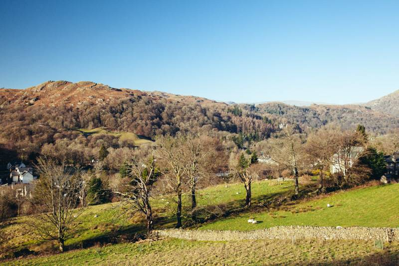 Blue sky above autumn coloured fells and bare trees in the Lake District