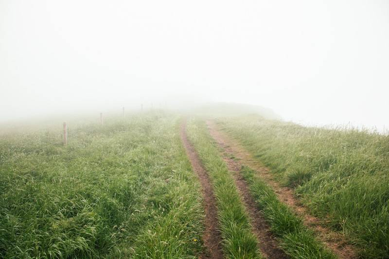 A Misty Hill