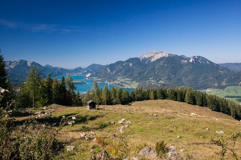 View of Lake Wolfgang in Austria, surrounded by mountains and trees