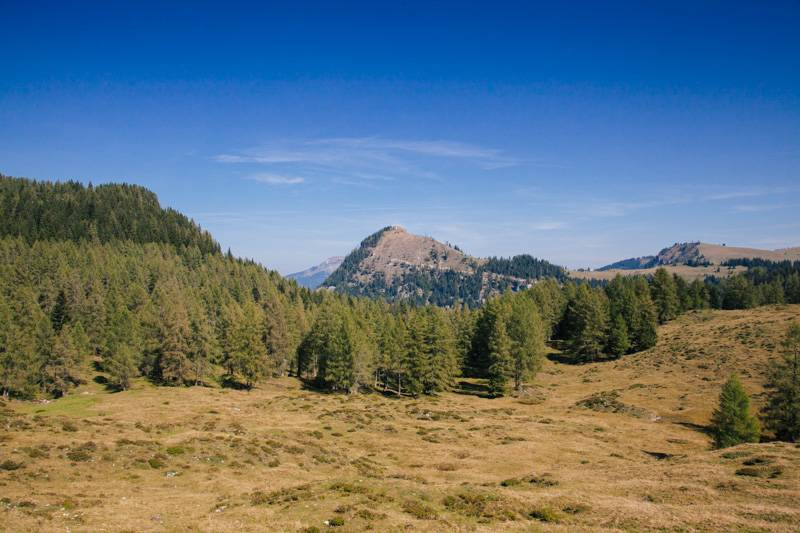 A view of mountains and trees in Postalm, Austria