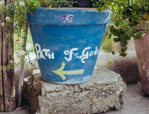 Path of the Gods plant pot